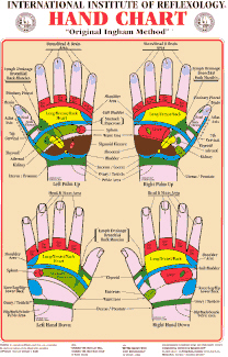 Reflex Points of the Hand